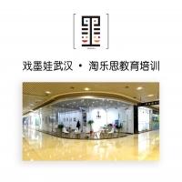 戏墨娃武汉--淘乐思教育培训中心